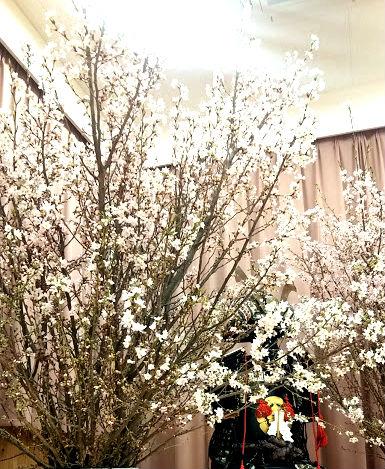 むせかえる桜のにおい